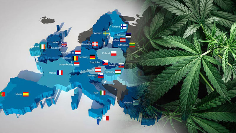 konopny-rynek-europejski