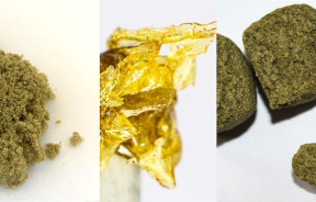 rodzaje ekstraktów konopi