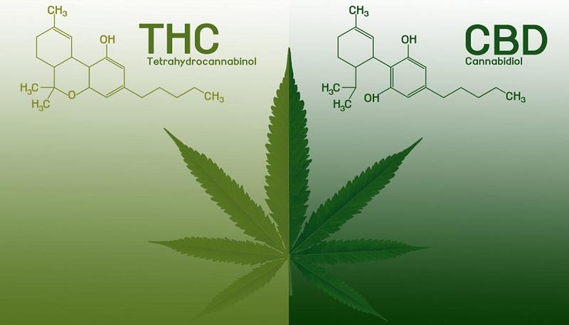 THC-V CBD-V