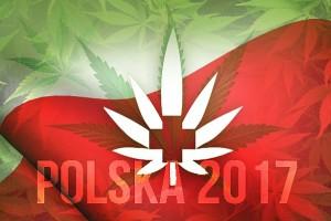 Prawo medycznej marihuany