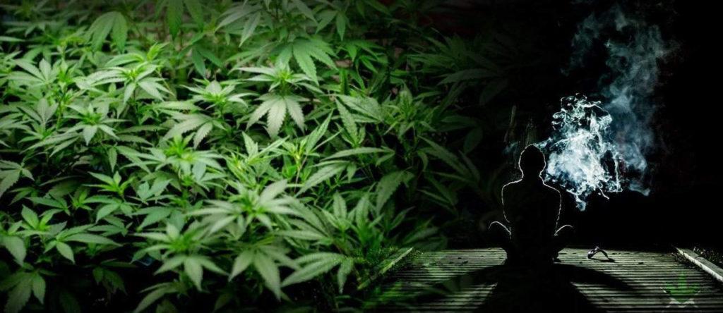 Waporyzacja marihuany