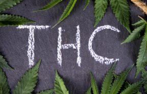 THC zwalczanie nowotworów