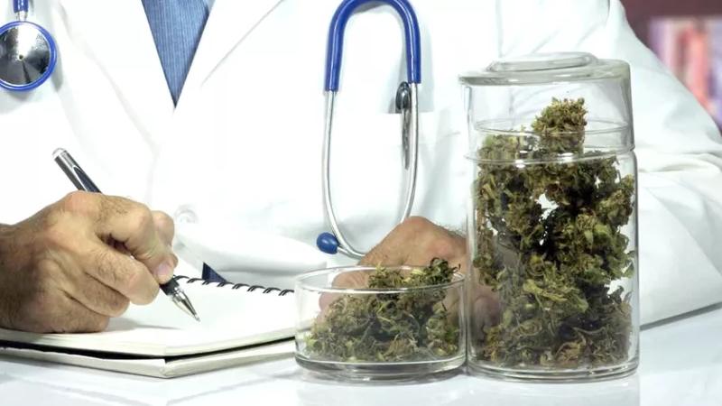 medyczna marihuana polskich pacjentów