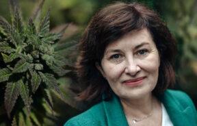 Beata-Maciejewska-jako-przewodnicząca-zespołu-ds.-legalizacji-marihuany