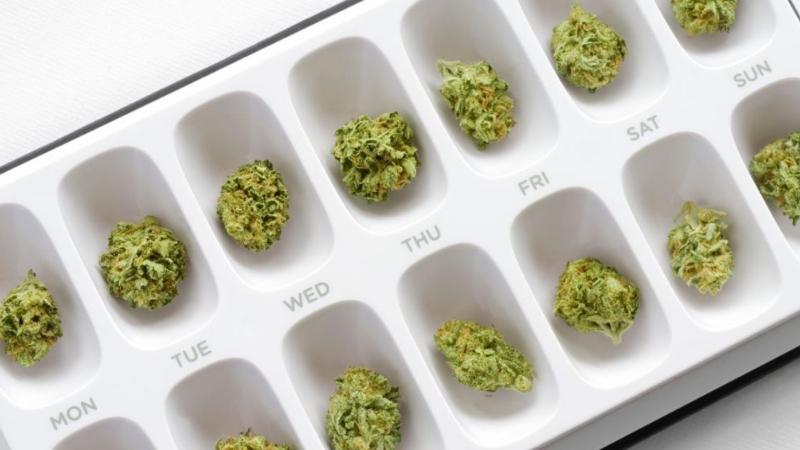 Dawkowanie marihuany medycznej
