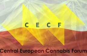 CECF cannabis forum