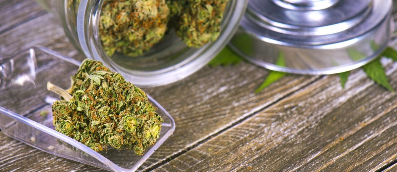 Przewaga CBD czy THC?