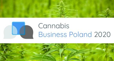 cannabis buisness poland
