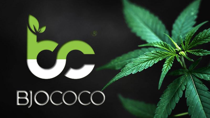 kosmetyki-BjoCoCo