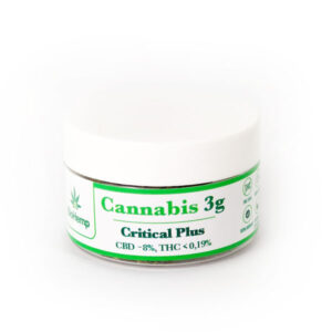 Critical Plus BioHemp susz cannabis CBD