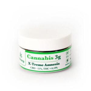 X-Treme Amnesia susz cannabis CBD BioHemp