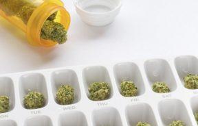 Jak dawkować medyczną marihuanę