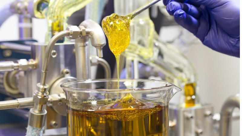 ekstrakcja konopi metody ekstraktor alkoholowy