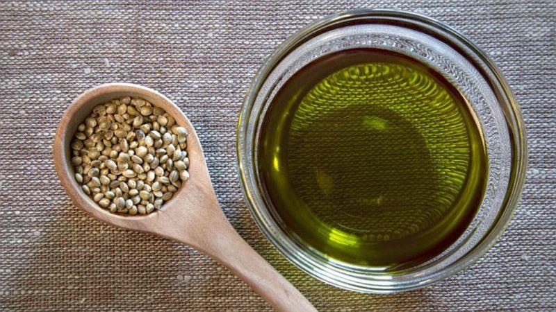 olej z nasion konopi właściwości i zastosowanie