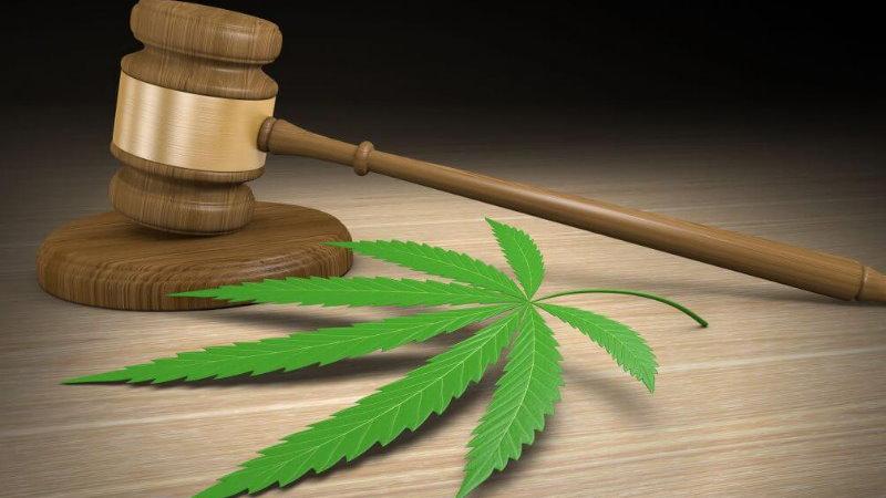 wyrok za leczenie marihuaną