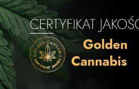 "Cannalabs certyfikat ""Gold Cannabis"""