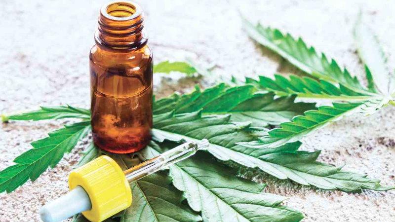 medyczna marihuana napady padaczkowe