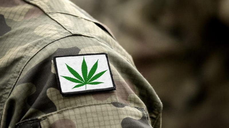 medyczna marihuana PTSD