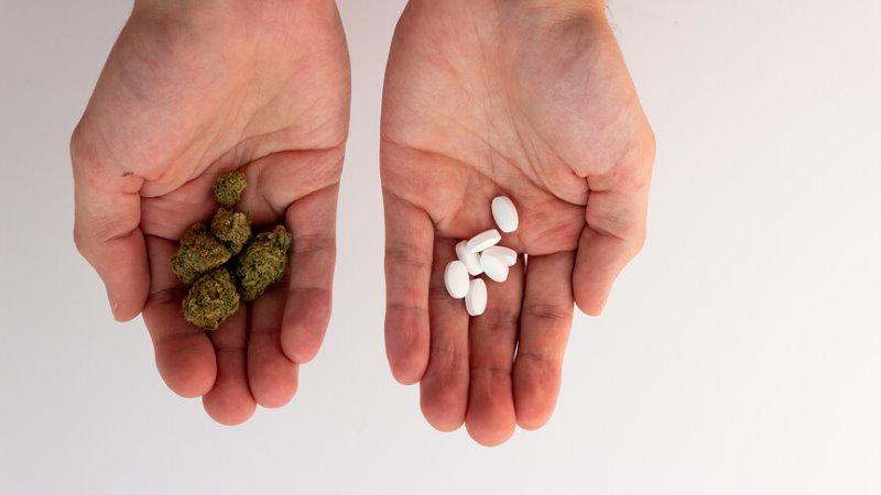 CBD i interakcje z lekami np. na tarczycę