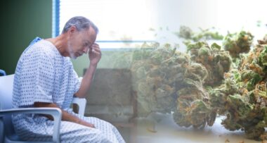 nie ma medycznej marihuany w polskich aptekach
